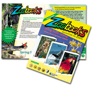catalog design prices services chicago cost pricing budget